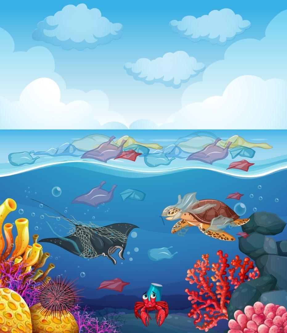מדעי הים